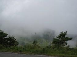 奥山田の霧
