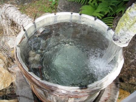 七味温泉 山王荘の湯