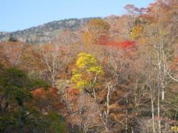幕川温泉の露天風呂からの景色