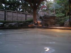 岳温泉のにごり湯